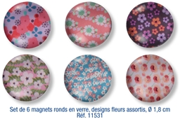 Set de 6 magnets ronds en verre, designs assortis ø 1,8 cm